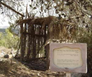 Sukkah in Wilderness (Neot Kedomim)