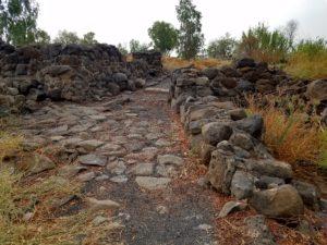Excavation at Bethsaida