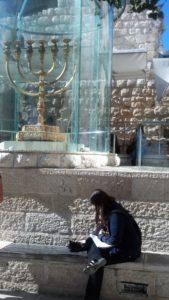Temple Menorah with Cat